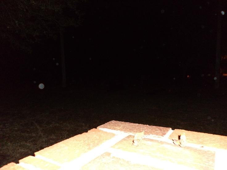 Fogartyville Cemetery